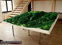 Largest Scale Model made with CNC Router-defileul-jiului-4-jpg
