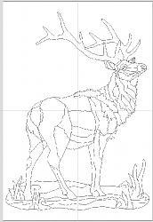 tracing an elk detailed diagram-elk2-jpg