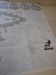 tracing an elk detailed diagram-elk5-jpg