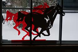 traced a paper diagram of a running  horse-p1010264-jpg